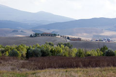 Tuscany nautre Stock Photography