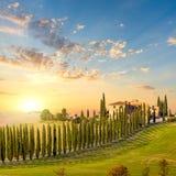Tuscany på solnedgången - bygdväg med träd och huset Arkivbilder