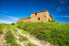 Tuscany på våren Royaltyfri Fotografi