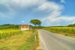 Tuscany Panorama - Italy Royalty Free Stock Image