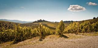 Tuscany. Panoramic view of scenic Tuscany landscape with vineyard in the Chianti region, Tuscany, Italy Royalty Free Stock Photo