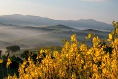 Tuscany panoramiczny krajobraz Obrazy Royalty Free