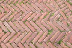 Tuscany paving. Old Tuscany paving made of red bricks Stock Images