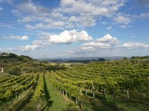 Tuscany pola obrazy royalty free