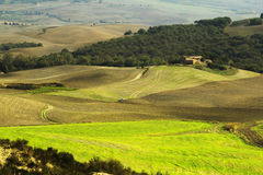 Tuscany pola w jesieni Zdjęcia Royalty Free