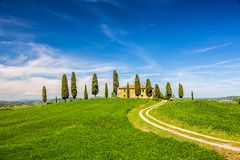 Tuscany przy wiosną Obrazy Stock