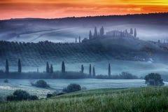 Tuscany ranch med vingården Royaltyfri Fotografi