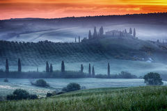 Tuscany ranch with vineyard Royalty Free Stock Photography