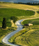 TUSCANY ROAD Royalty Free Stock Images