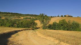 Tuscany, road on rolling hill, rural landscape, Italy. Road on rolling hill and wheat field in a rural landscape. Val d Orcia land near Siena, Tuscany, Italy stock footage