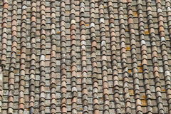 Tuscany roof tiles. Old roof tiles in tuscany Stock Photography
