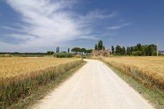 Tuscany rozdroża Zdjęcia Stock