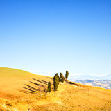 Tuscany, rural landscape. Cypress trees in a row Royalty Free Stock Image