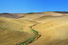 Tuscany rural landscape Royalty Free Stock Photo