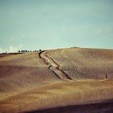 Tuscany rural landscape Stock Photography