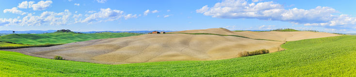 Tuscany, rural  landscape. Rolling hills, countryside farm, tree Stock Image
