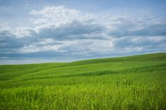 Tuscany rural landscaper path countryside italy green blue. Sky royalty free stock photo