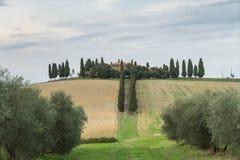 Tuscany, rural sunset landscape Stock Images