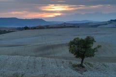 Tuscany, rural sunset landscape Royalty Free Stock Image