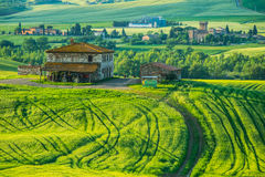Tuscany, rural sunset landscape. Countryside farm, cypresses trees,. Green field, sun light and cloud. Volterra, Italy, Europe Stock Images