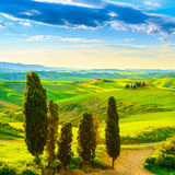 Tuscany, rural sunset landscape. Countryside farm, white road an. Tuscany, rural sunset landscape. Countryside farm, cypresses trees, green field, sun light and Stock Photos