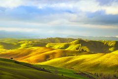 Tuscany, rural sunset landscape. Countryside and trees. Tuscany, rural sunset landscape. Countryside farm, cypresses trees, green field, sun light and cloud Stock Photos