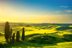 Tuscany, rural sunset landscape. White road and cypress trees. V Stock Photos
