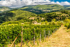 Tuscany's countryside. Photo was taken in Tuscany, Chianti region,Italy stock image