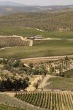 Tuscany's fields stock photos