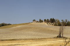 Tuscany's hill stock images
