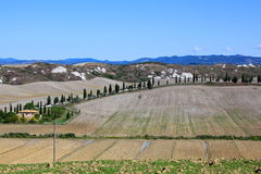 Tuscany's Rural Farmland Stock Photography