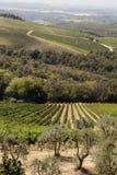 Tuscany's view Stock Photos