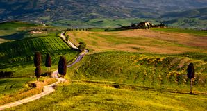 Tuscany scene from gladiator movie with road and farmhouse stock image