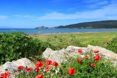 Tuscany seaside Stock Photos