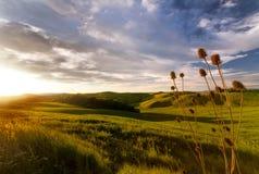 Tuscany solnedgång Arkivfoton