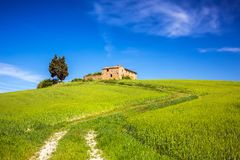 Tuscany at spring Royalty Free Stock Photography