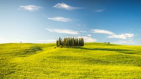 Tuscany at spring Stock Photography