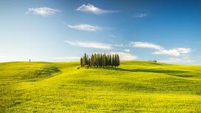 Tuscany at spring Stock Photography