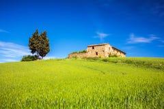 Tuscany at spring Stock Photo