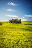 Tuscany at spring Royalty Free Stock Photography