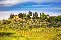 Tuscany at spring Stock Photos