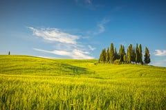 Tuscany at spring Stock Image