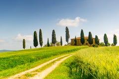 Tuscany, spring landscape Stock Photography