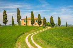 Tuscany spring landscape Stock Image