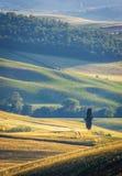 Tuscany, spring landscape stock photos