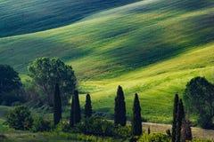 Tuscany, spring landscape Royalty Free Stock Photo
