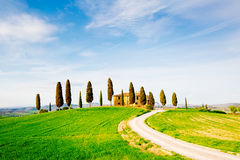 Tuscany, spring landscape stock photo