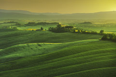 Tuscany spring, rolling hills on misty sunset. Rural landscape. Green fields and farmlands. Italy, Europe Royalty Free Stock Photos