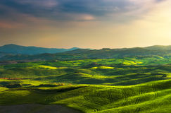 Tuscany spring, rolling hills on sunset. Rural landscape. Green Royalty Free Stock Photo