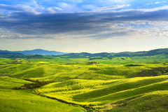 Tuscany spring, rolling hills on sunset. Rural landscape. Green Stock Images